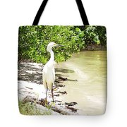 Looking For Lunch Gp Tote Bag