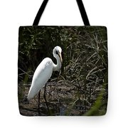 Looking For Lunch Tote Bag by Tamyra Ayles
