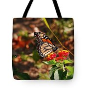 Looking For Nectar Tote Bag