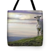 Looking From The Above Tote Bag