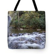 Looking Glass Falls Downstream Tote Bag