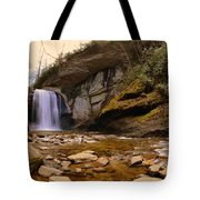 Looking Glass Falls Pisgah National Forest 2 Tote Bag