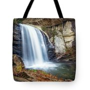 Looking Glass Falls Tote Bag
