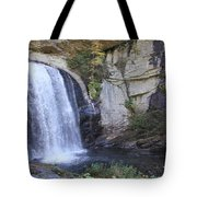 Looking Glass Falls Side View Tote Bag
