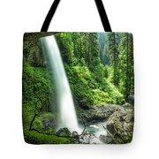 Looking Out From Under North Falls Tote Bag