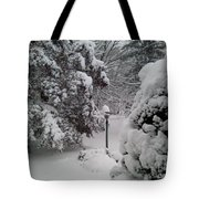 Looking Out My Front Door Tote Bag by Carol Wisniewski