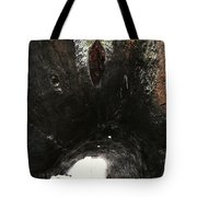 Looking Through The Hollow Trunk Of An Ancient Fallen Sequoia In Kings Canyon California Tote Bag