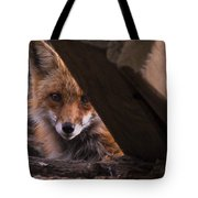 Looking Through The Woodpile Tote Bag