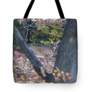 Looking Thru The Trees Tote Bag