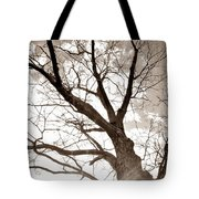 Looking Up In Sepia Tote Bag