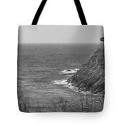 Looking West Tote Bag