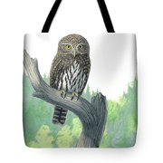 Lookout- Northern Pygmy-owl Tote Bag