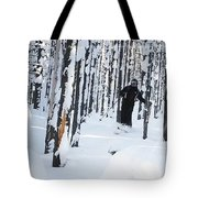 Lookout Trees Tote Bag