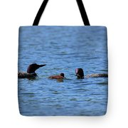 Loon Family Feeding Time Tote Bag