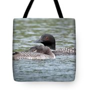 Loon Lullaby Tote Bag