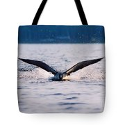 Loon Take Off Aborted Tote Bag