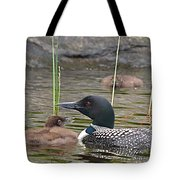 Loon Time Tote Bag by Peter Gray