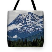 Looned View Tote Bag