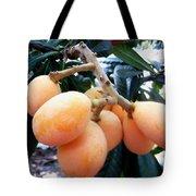 Loquat Exotic Tropical Fruit  Tote Bag