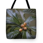 Loquat Fruit Tote Bag