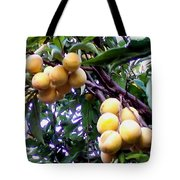 Loquats In The Tree 1 Tote Bag