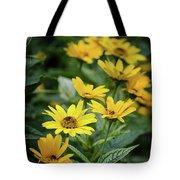 Loraine Sunshine 2 Tote Bag