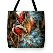 Lord Of The Dance 2 Tote Bag