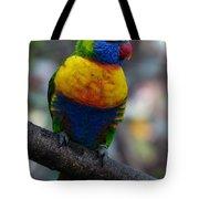 Lorikeet Parrot  Tote Bag