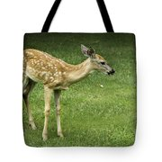 Lost Fawn Tote Bag