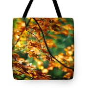 Lost In Leaves Tote Bag