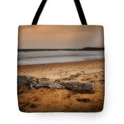 Lost Log 002 Tote Bag