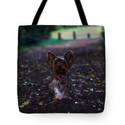 Lost Puppy Tote Bag