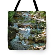 Lost River 1 Tote Bag