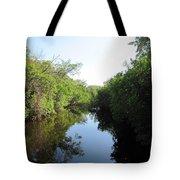 Lost Waterway Tote Bag