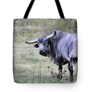 Lotta Bull Tote Bag by Jan Amiss Photography