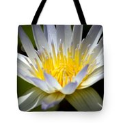 Lotus 10 Tote Bag