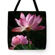 Lotus Beauties--upstaged Dl048 Tote Bag