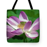 Lotus--center Of Being--protective Covering I Dl0087 Tote Bag