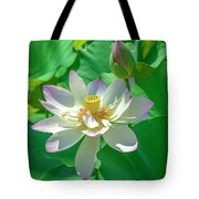 Lotus--fading I Dl0079 Tote Bag