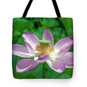 Lotus--fading IIi Dl0081 Tote Bag