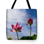 Lotus Flower And Lotus Flower Plants Tote Bag