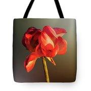 Lotus Flower Golden Glow Tote Bag