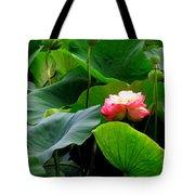 Lotus Forms Tote Bag