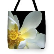 Lotus From Above Tote Bag