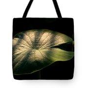 Lotus Leaves Morning  Shower Tote Bag