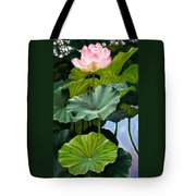 Lotus Rising Tote Bag