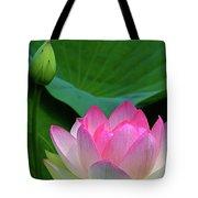 Lotus Siblings Tote Bag