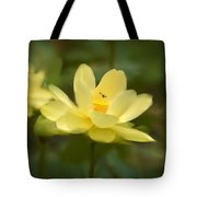 Lotus With Bee Tote Bag