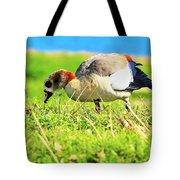 Loud Duck Colors Tote Bag
