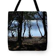 Lough Leane Through The Woods Tote Bag